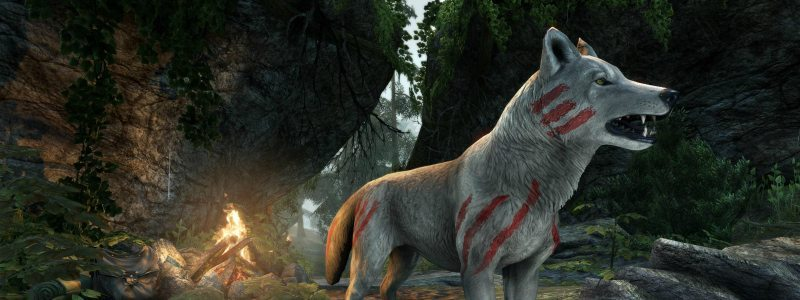 Elder Scrolls Online Wolf Pet Crown Store Showcase August